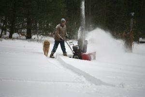 snowblowingdog (3)