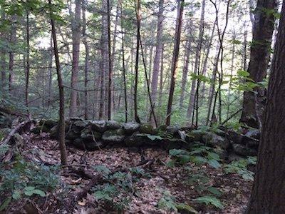 Along Bolton Pond Trail